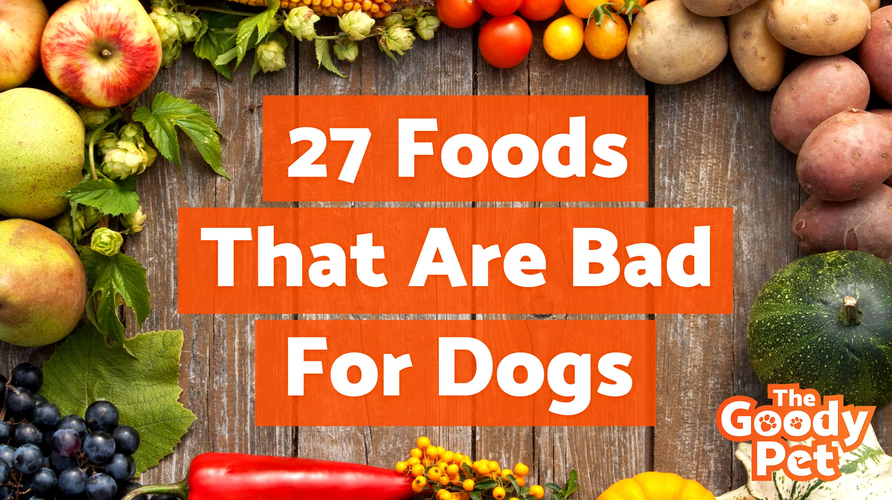 The 27 Worst Foods That Are Bad For Dogs (Warning: Toxic