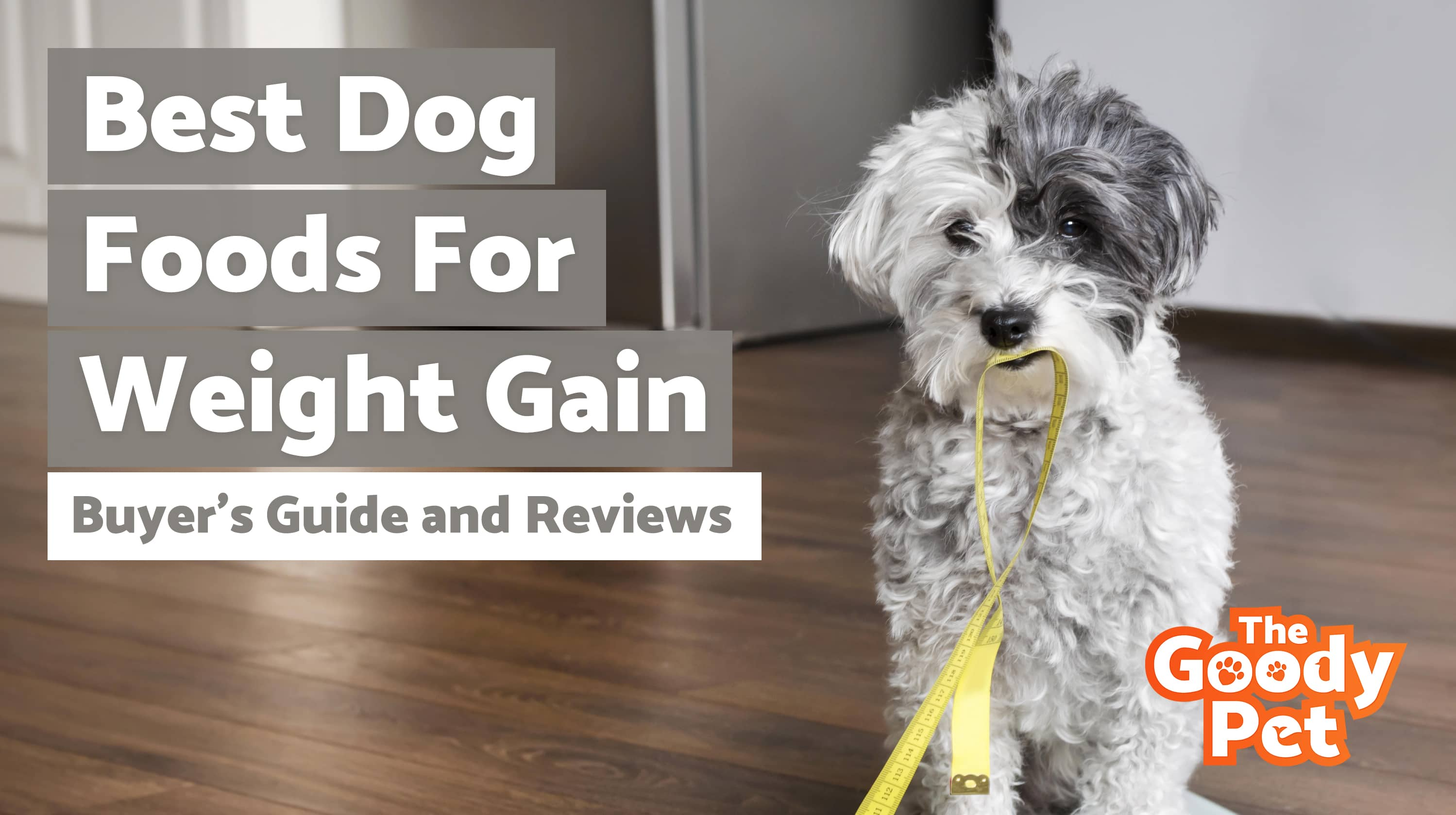 Best Dog Foods For Weight Gain – Our 2019 Reviews & Top Picks