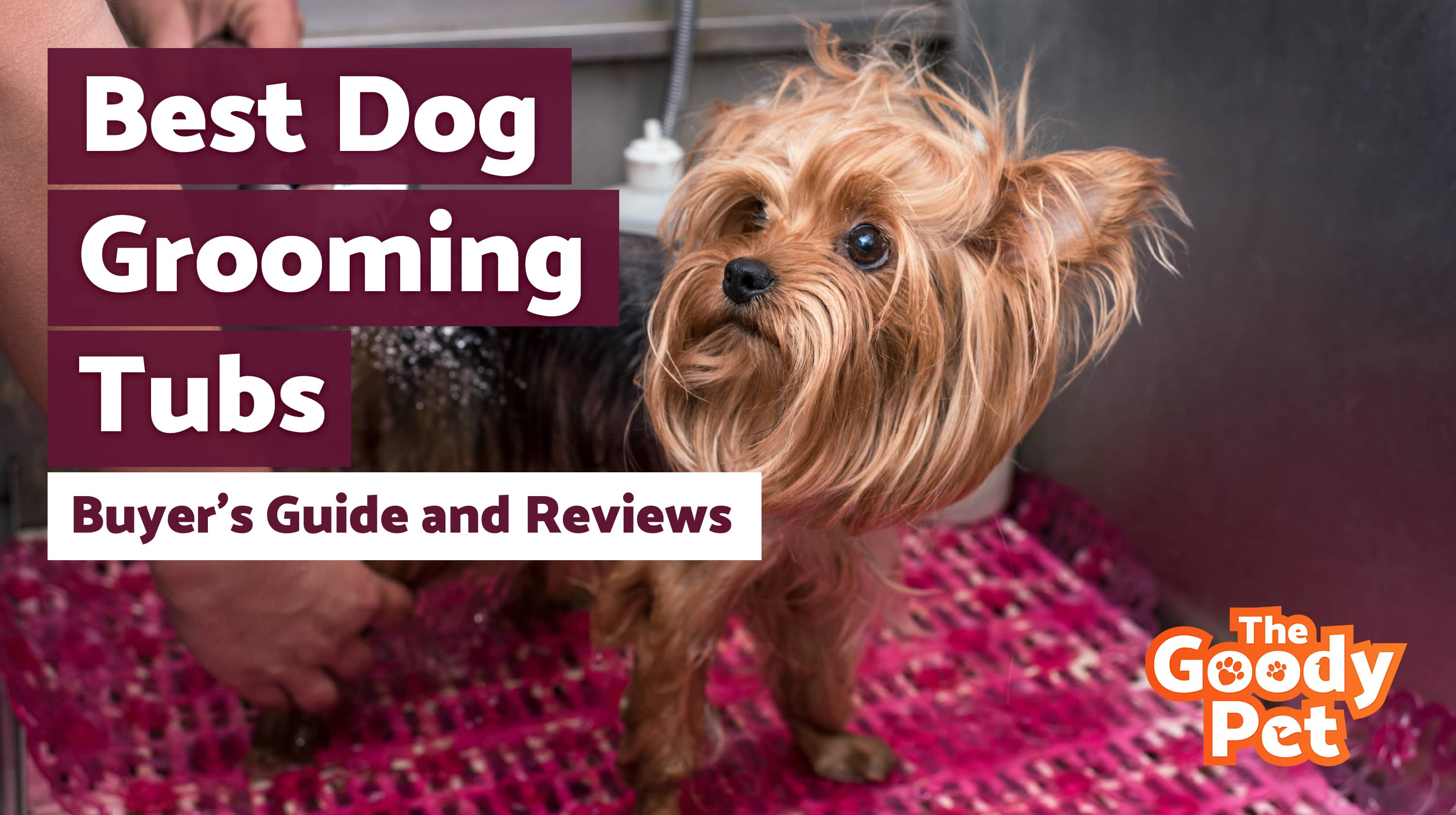 Best Dog Grooming Tubs For Bathing Your Pooch – Our 2019 Reviews & Top Picks