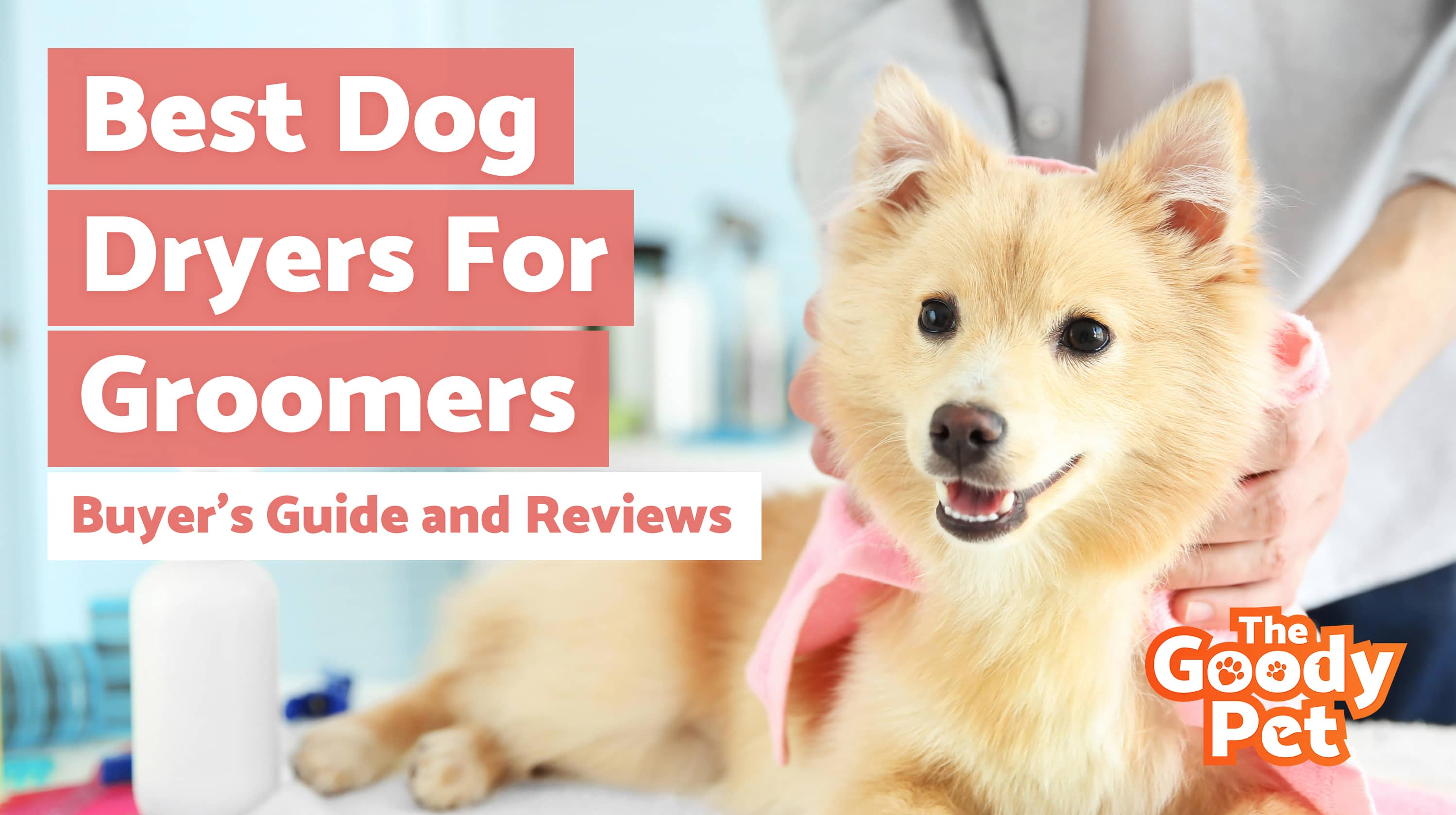 Best Dog Hair Dryers For Grooming – Our 2019 Reviews & Top Picks