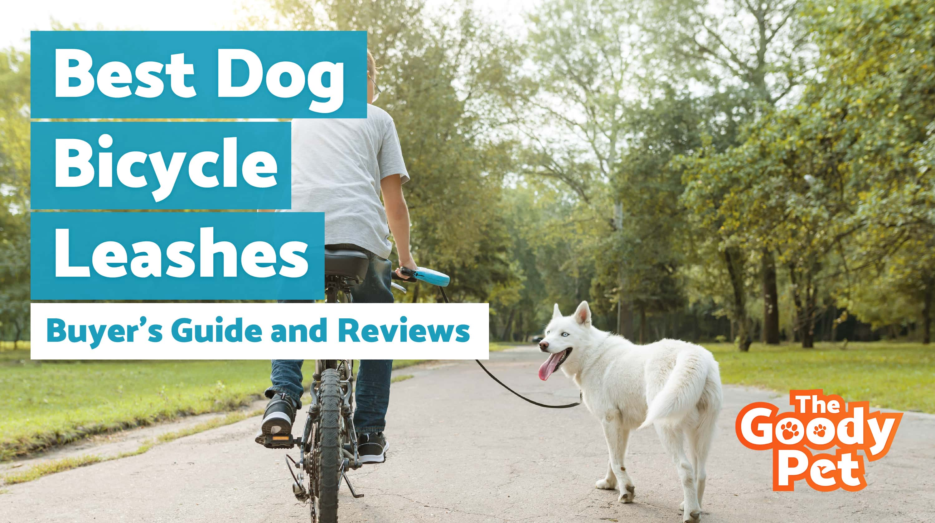 Best Dog Leash For Bicycle Riding With Your Pooch – Our 2019 Reviews & Top Picks