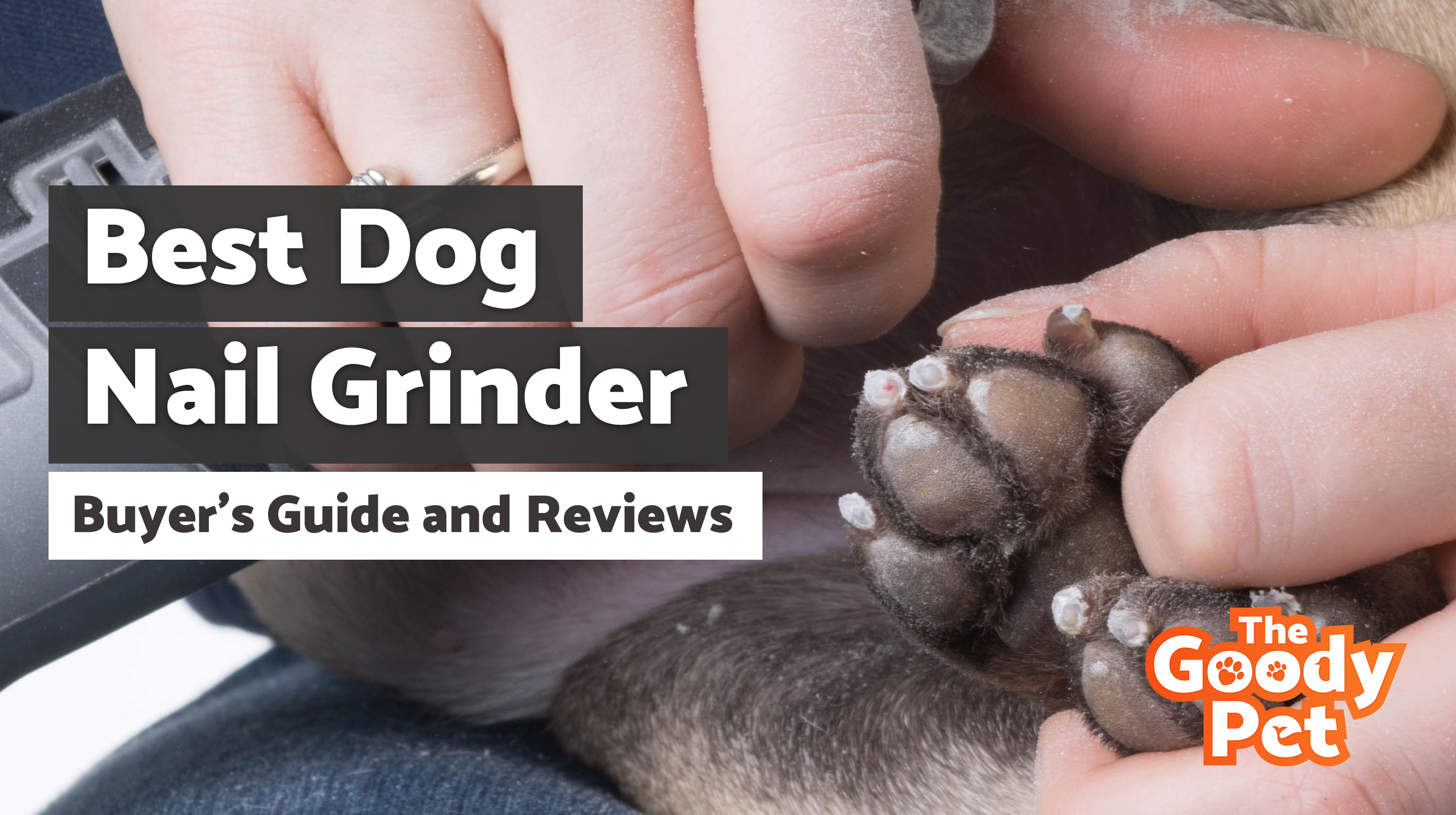11 Best Dog Nail Grinders (May 2019) | Buyer's Guide & Reviews | The Goody Pet