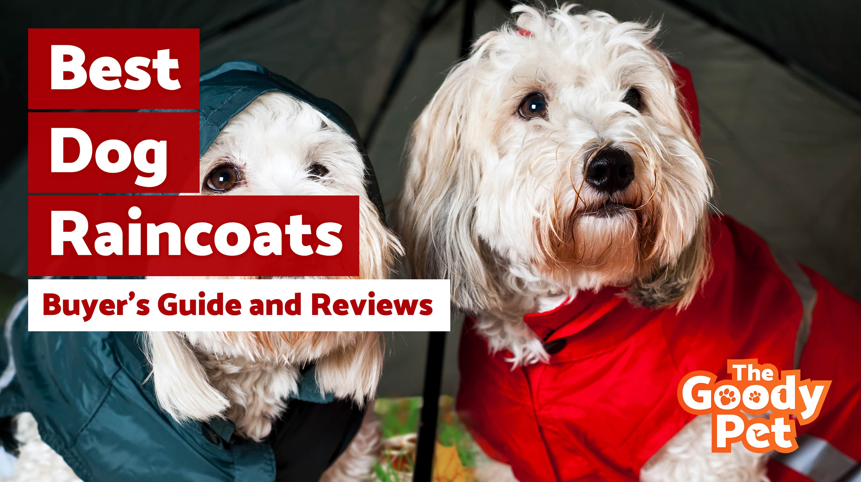 Best Dog Raincoats For Your Furry Friend – Our 2019 Reviews & Top Picks
