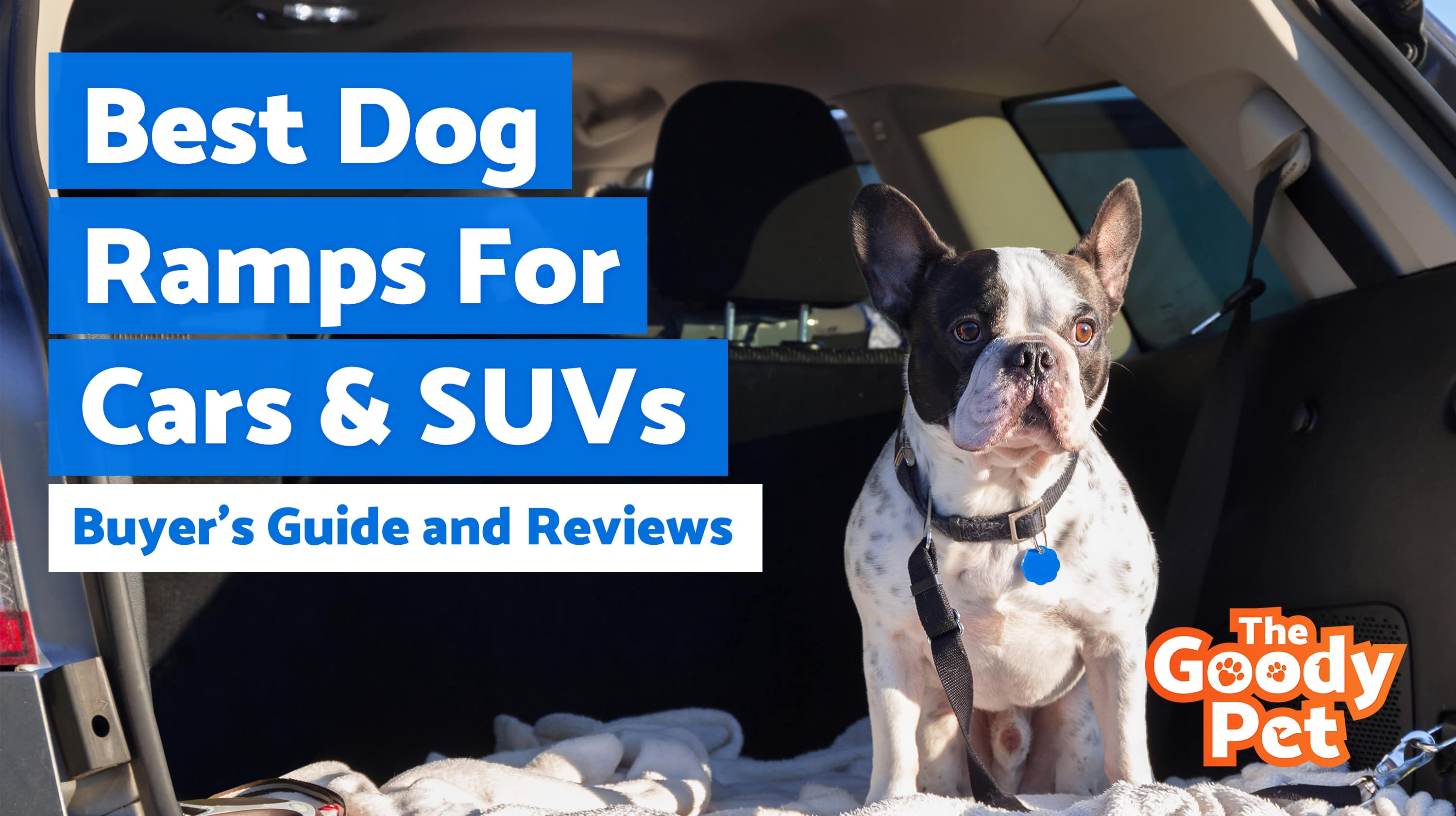 Dog Ramp For Truck >> 8 Best Dog Ramps For Cars & SUVs (March 2020) | TheGoodyPet