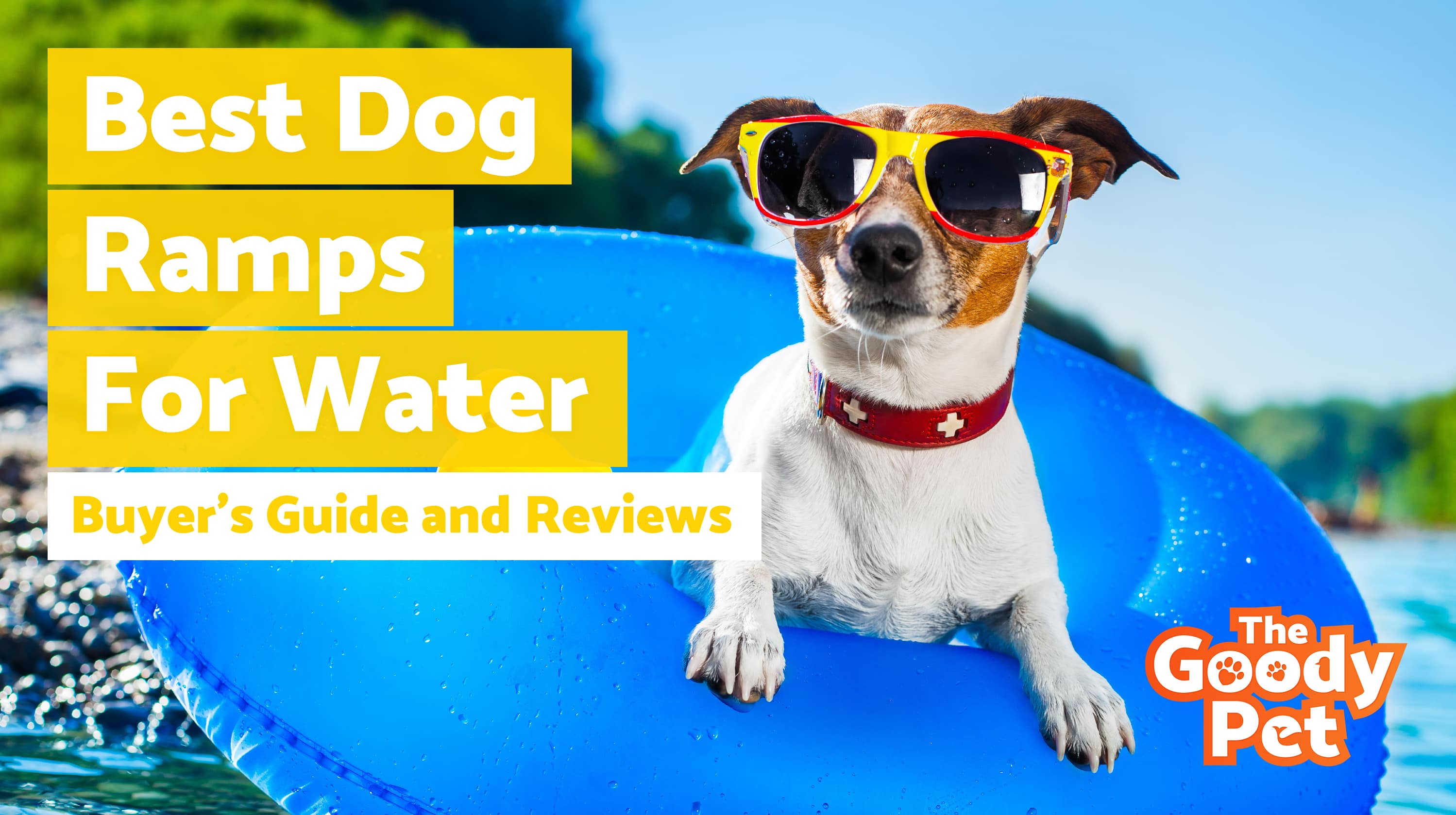 Best Dog Ramps For Water (Endless Summer Fun!) – Our 2019 Reviews & Top Picks