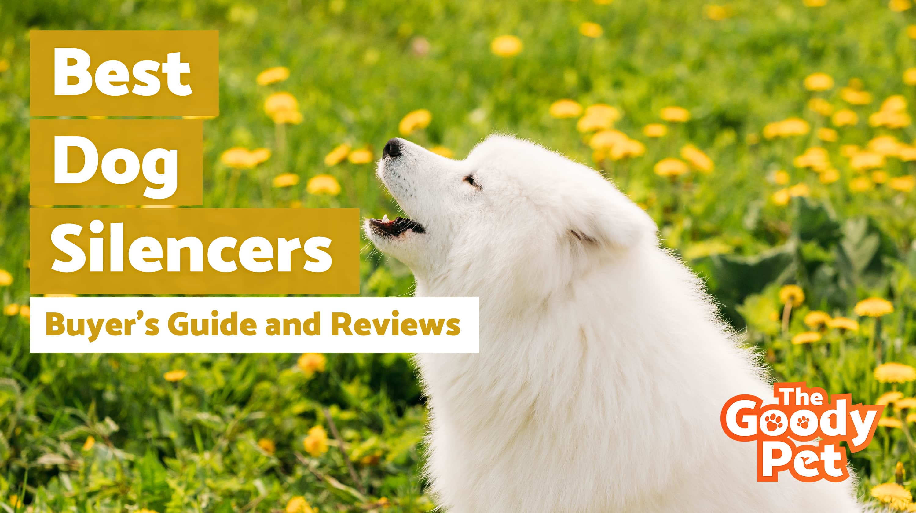 Best Dog Silencers For Your Barking Pooch – Our 2019 Reviews & Top Picks