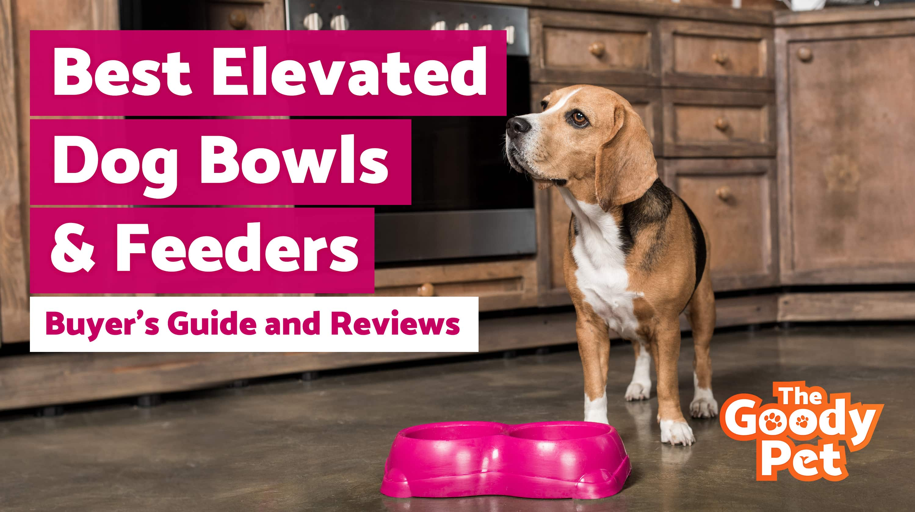 Best Elevated Dog Bowls & Feeders For Your Pooch – Our 2019 Reviews & Top Picks
