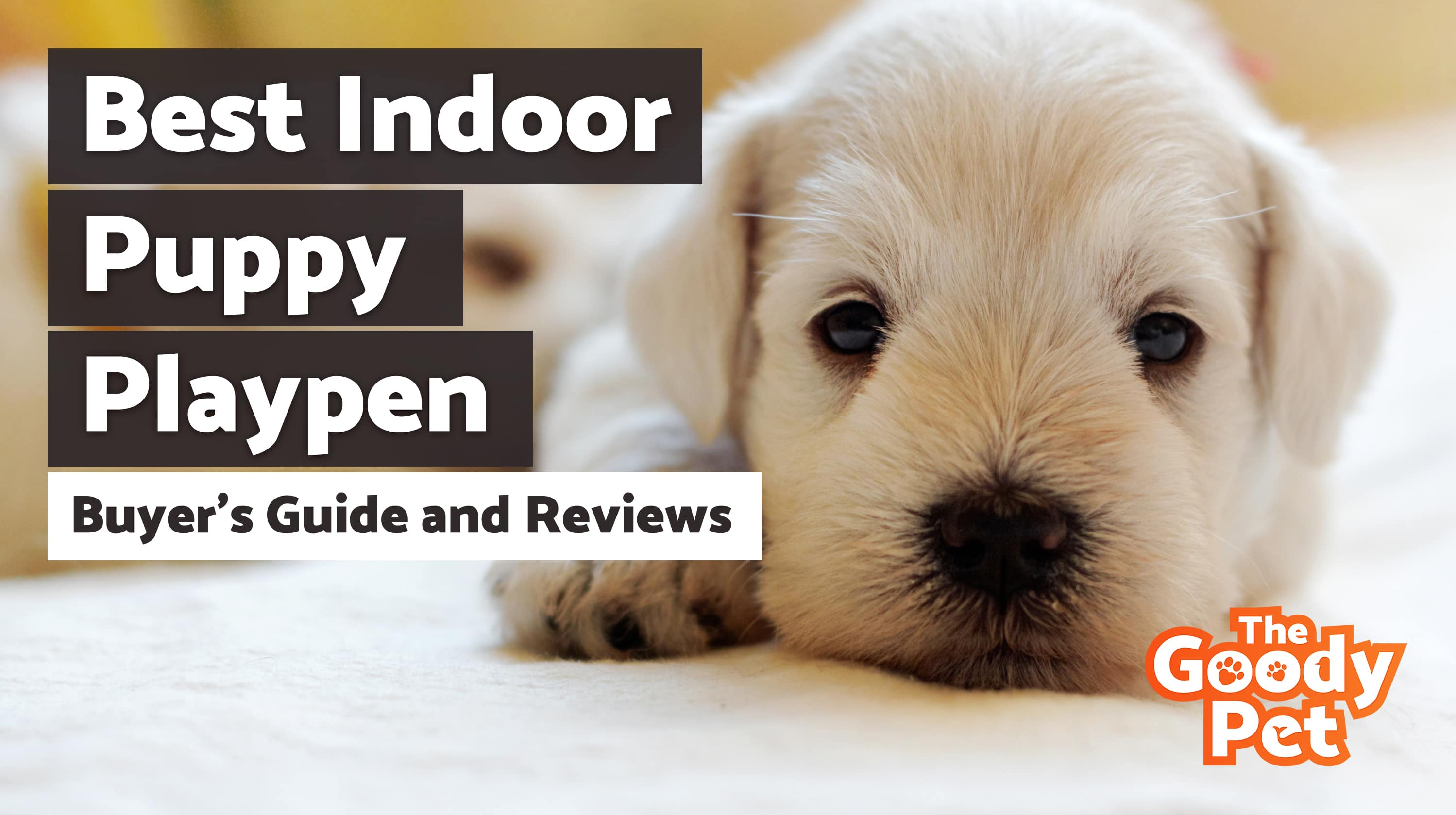 11 Best Indoor Dog Amp Puppy Playpens November 2019