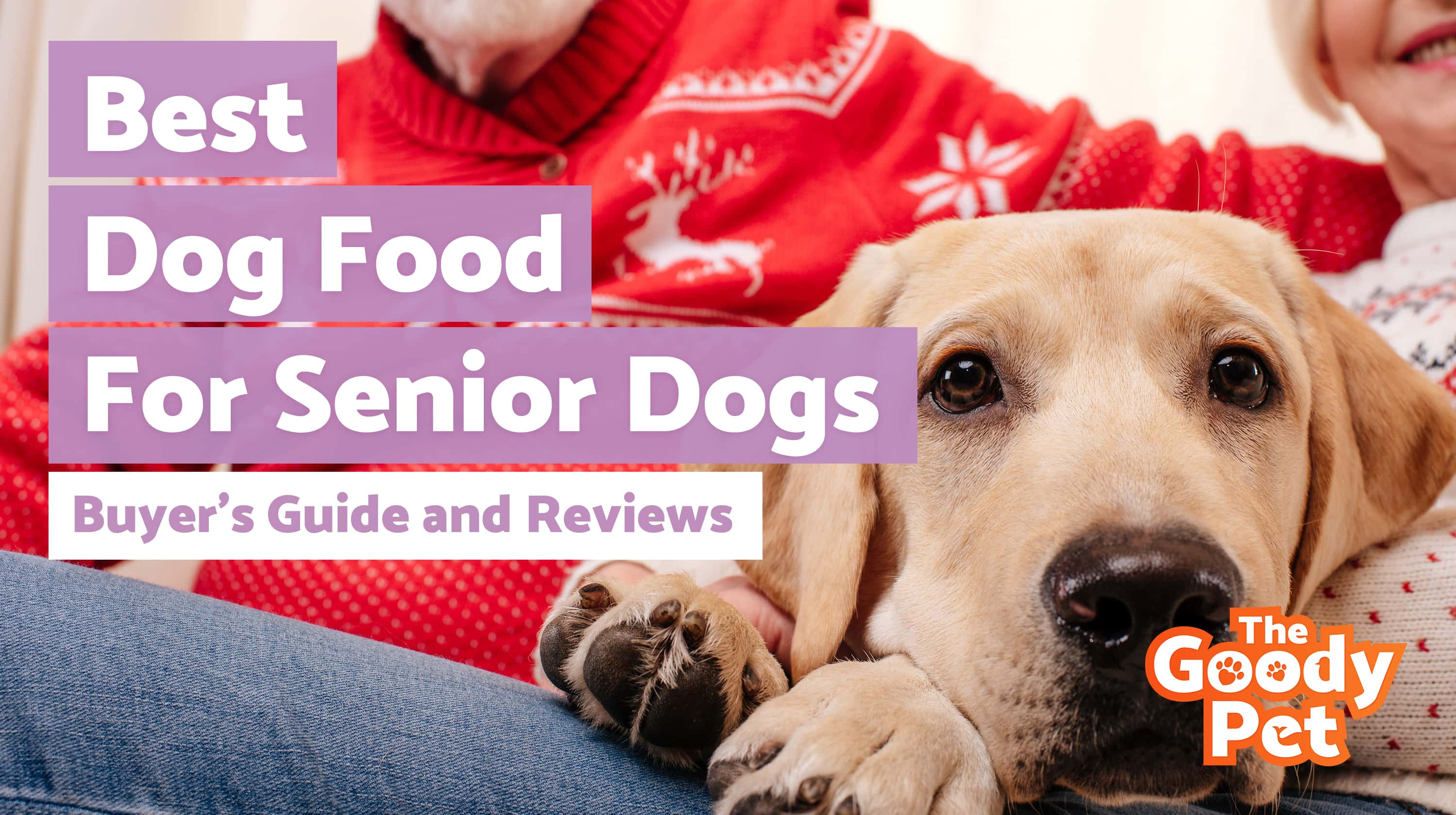 Best Senior Dog Foods For Your Aging Pooch – Our 2019 Reviews & Top Picks